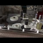 自動洗瓶灌裝旋蓋機滴眼劑灌裝生產線